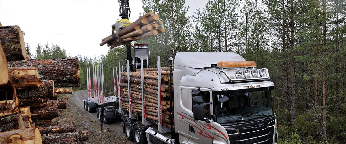 Holzhandel Transport